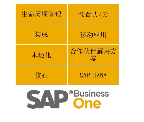 SAP Business One9.2